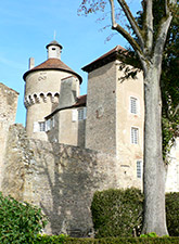 chateau de sercy XIIIth tower